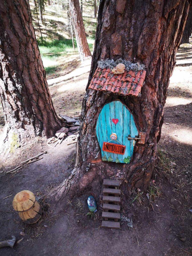 El bosque mágico de Soria