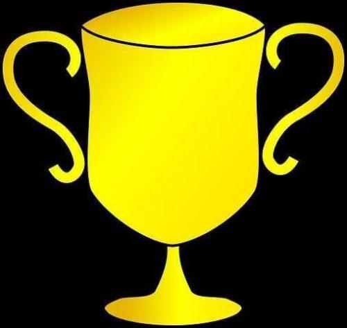 trophy-305554__480_compress891580339813390050637.jpg