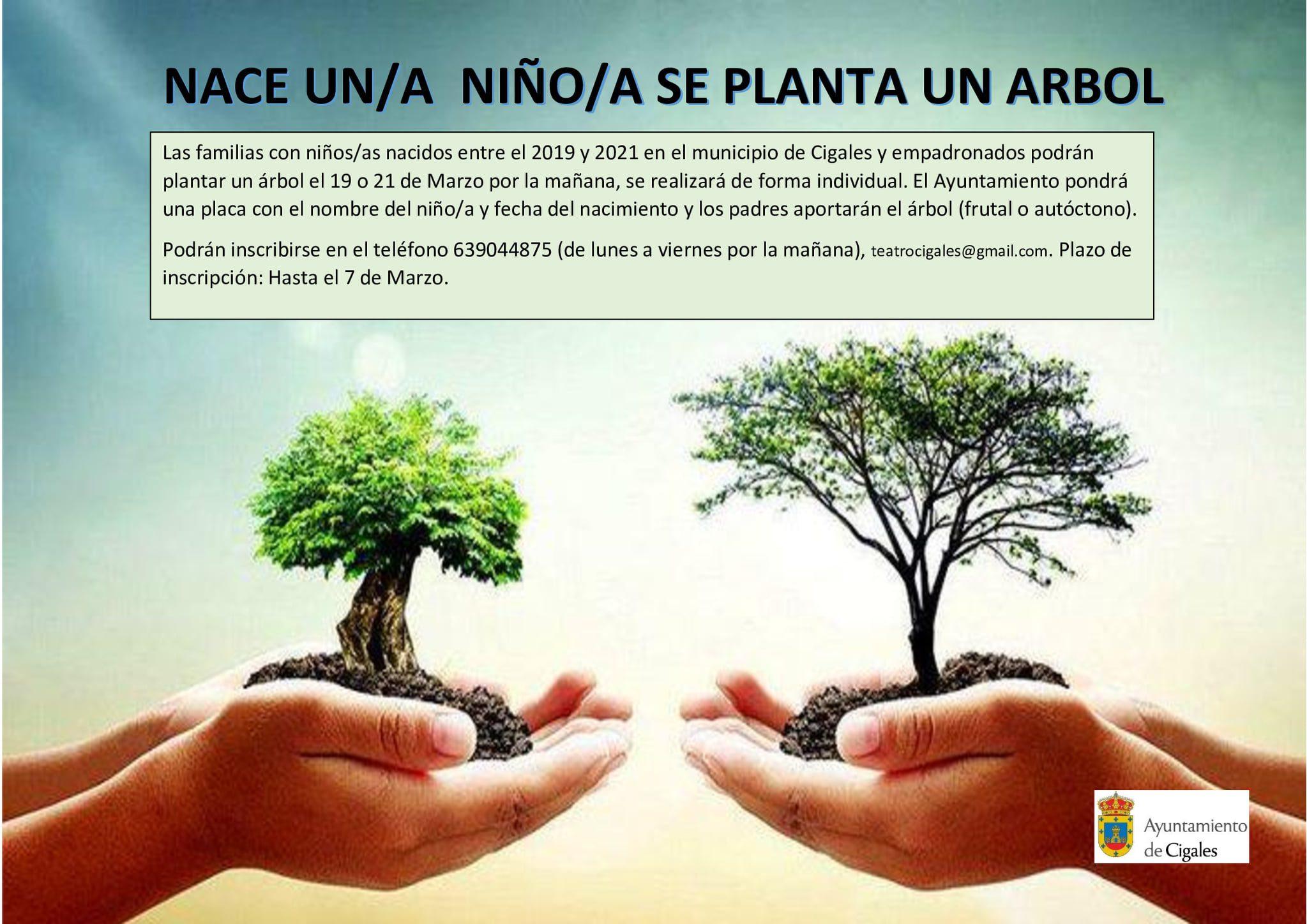 Nace un niño, planta un árbol