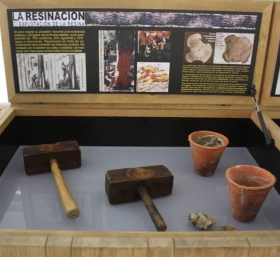 Siete museos curiosos de Valladolid